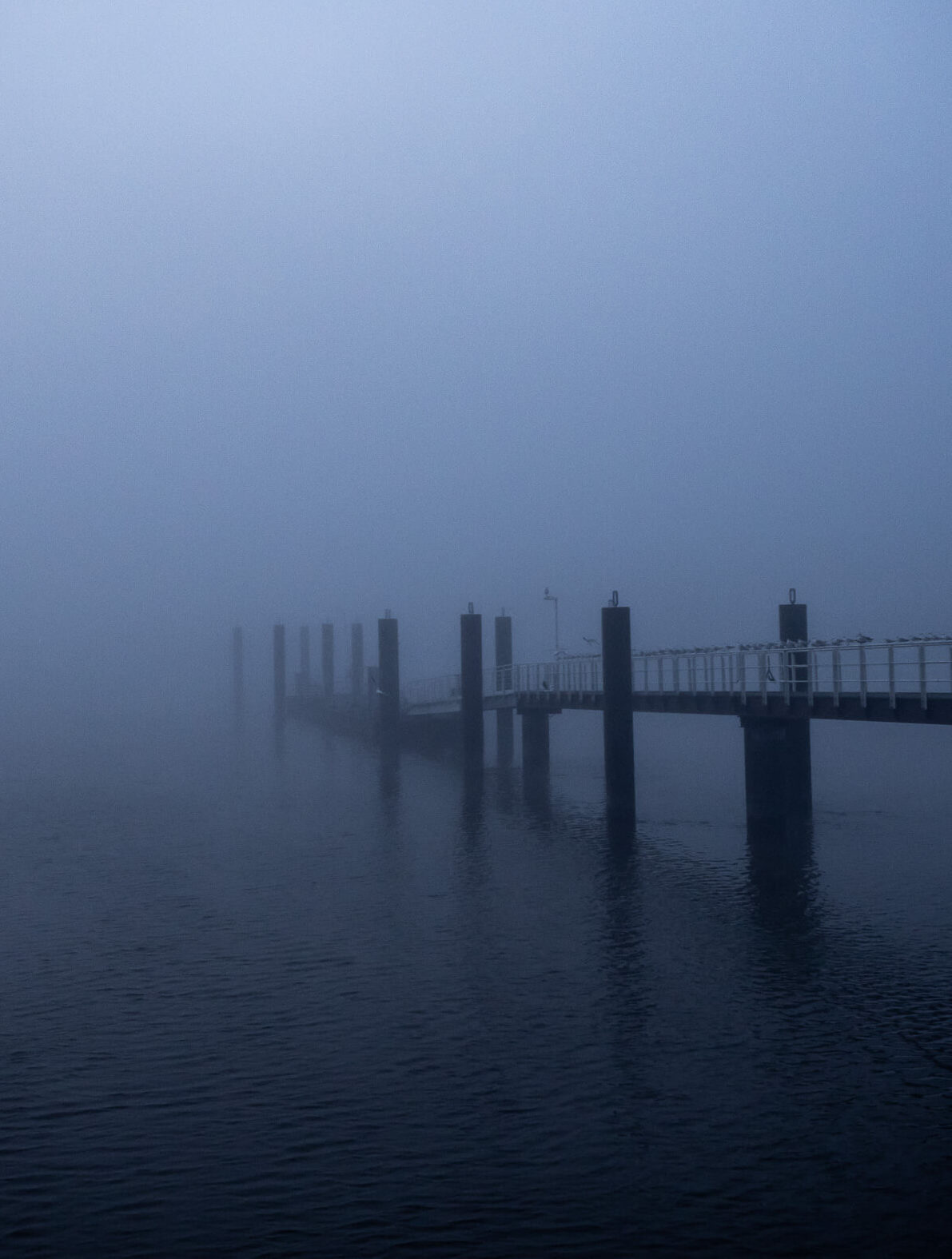 photocademy-workshops-nebel-hamburg