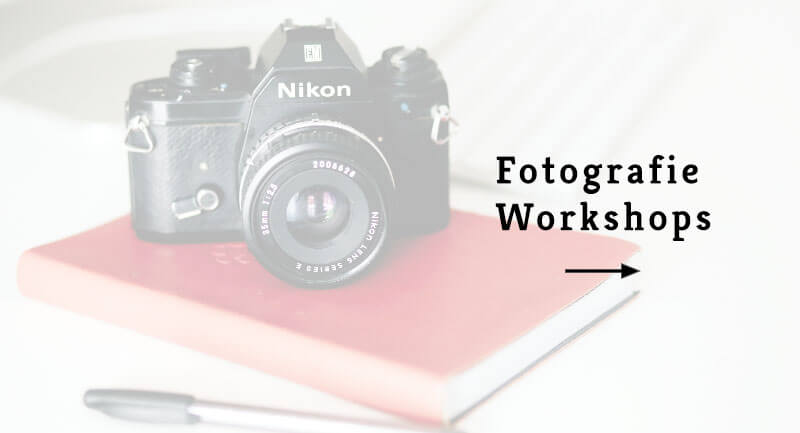 workshops fotografie hamburg